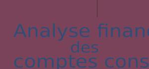 Analyse financière des comptes consolidés - Normes IFRS