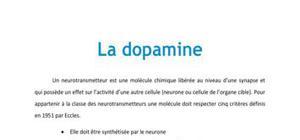 La dopamine - Neurologie PACES