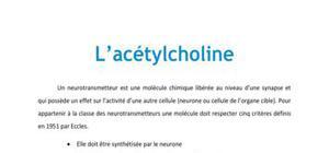 L'acétylcholine - Neurologie PACES
