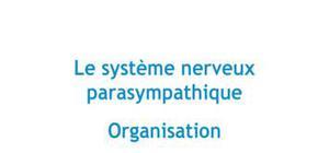Le système nerveux parasympathique : Organisation