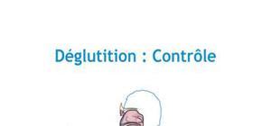 Déglutition : Contrôle - Médecine PACES