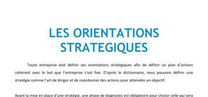 Les organisations stratégiques - BTS NRC