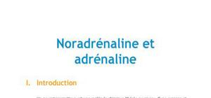 Noradrénaline et adrénaline - Biologie PACES