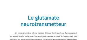 Le glutamate neurotransmetteur - Biologie PACES