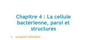 Chapitre 4 : La cellule bactérienne, paroi et structures - Biologie PACES