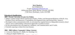 CV template Local Government