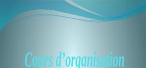 l'organisationet l'environnement  d'entreprise