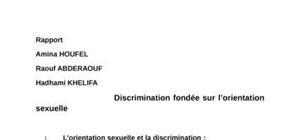 rapport sur la discrimination