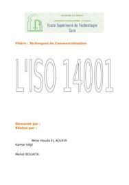 Rapport de l'iso 14001