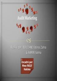 Importance de l'audit marketing,