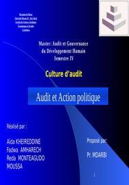 Audit et action politique