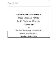 Rapport de stage en service export import