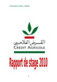 Rapport de stage credit agricole