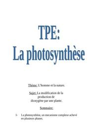 La photosynthese etude