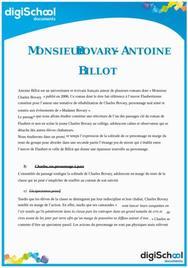 Monsieur Bovary - Antoine Billot