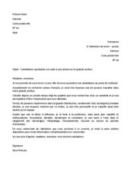 Doc - Lettre de motivation grande surface