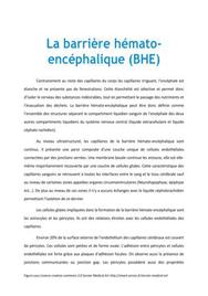 La barrière hémaro-encéphalique (BHE) - Médecine PACES