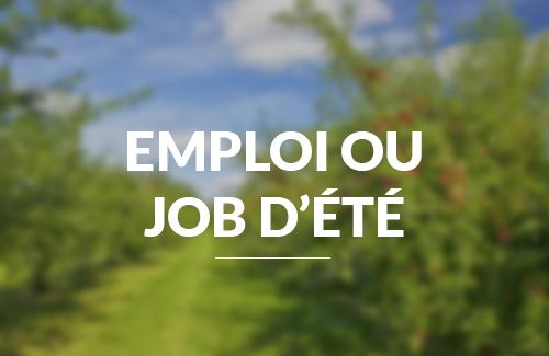 Lettres de motivation pour un emploi ou un job d'été