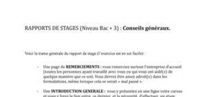Conseils rédaction rapport de stage