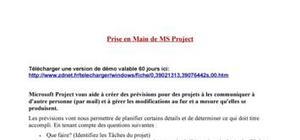 Prise en main de Microsoft Project