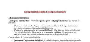 Entreprise individuelle et entreprise sociétaire