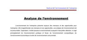 Analyse de l'environnement d'entreprise