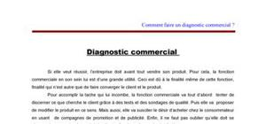 Marketing : Diagnostic Commercial