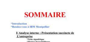 Dossier Environnement IBM