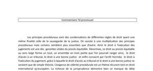 Droit processuel - Commentaire comparé des arrêts kudla et Hornsby
