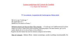 """Lecture analytique de l'extrait de Candide: """" Le Nègre de surinam"""""""