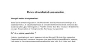 Théorie et sociologie des organisations