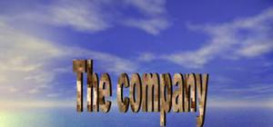 The company and its types