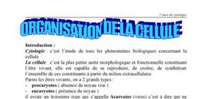 Notions de cytologie