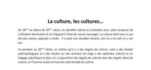 La Culture, les cultures...