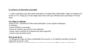 Les chômeurs de Marienthal - Lazersfeld