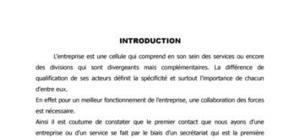 Action professionnelle:l'archivage et le rangement des documents.