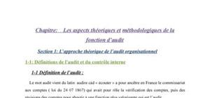 Les aspects théoriques et méthodologiques de la fonction d'audit