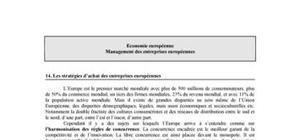 Les stratégies d'achat des entreprises européennes
