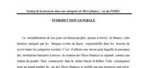 Gestion de la tresorerie dans une entreprise de microfinance