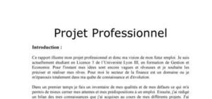 Memoire gestion de projet pdf