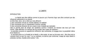 Révision Bac Philosophie - La Liberté