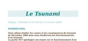 TPE sur le Tsunami 2004