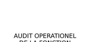 Audit opérationnel de la fonction commerciale