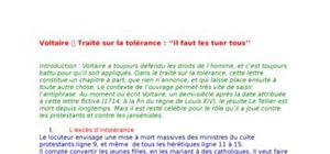 Traité sur la tolérance : Voltaire