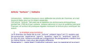 Article Torture de Voltaire