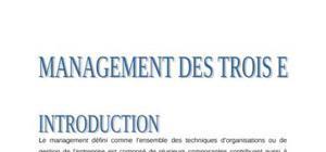 Le Management des trois E (efficace, efficient, économique)