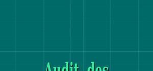 Audit des ressources humaines