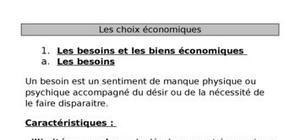 Les choix économiques