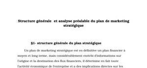 Structure générale et analyse préalable du plan de marketing stratégique