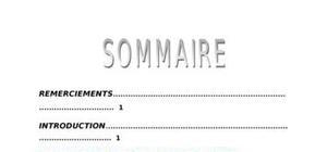 Rapport de stage - Note de synthèse - BTS AG PME-PMI